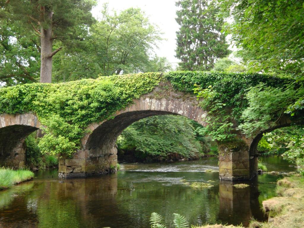 Ireland county wicklow-derrybawn bridge